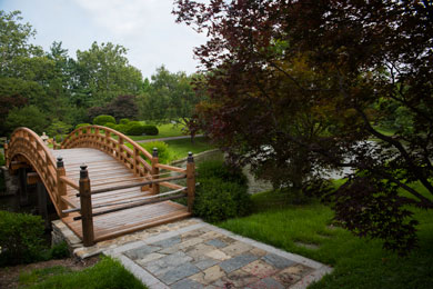 Japanese Garden drum bridge from Teahouse Island