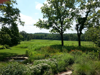 SNR Wildflower Garden at Carriage House